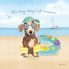 Summer Paws III by Beth Grove art print