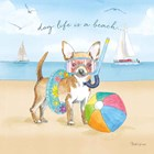 Summer Paws II by Beth Grove art print