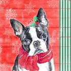 Holiday Puppy II by Patricia Pinto art print