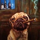 Uptown Pug by Lucia Heffernan art print