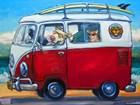 Sunglass Mutt by CR Townsend art print