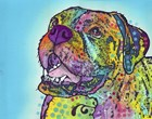 Smiling Boxer by Dean Russo art print