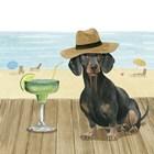 Let's Go for a Boardwalk IV by Grace Popp art print