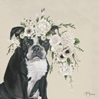 Dog and Flower by Hollihocks Art art print