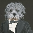 Dog in Suit by Hollihocks Art art print