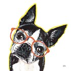 Bespectacled Pet IV by Melissa Averinos art print