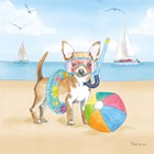 Summer Paws II No Words by Beth Grove art print