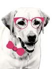 Pink Pop on Pup by Susan Bryant art print