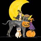 Fright Night Friends II Dog with Pumpkin by Tara Reed art print