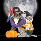 Fright Night Friends III Pirate Pug by Tara Reed art print