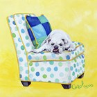 Bulldog on Polka Dots by Carol Dillon art print