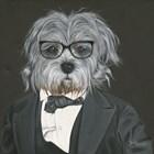 Dog in Suit by Hollihocks Art art print