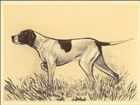 Hunting Dogs-Pointer by Andres Collot art print