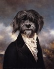 Gavroche by Thierry Poncelet art print
