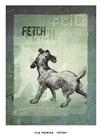 Fetch by Tija Patrick art print