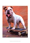 Bull Dog Nose Grind by Robert McClintock art print