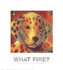What Fire? by Karen Dupre art print