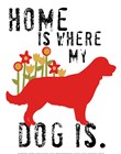 Home Is Where My Dog Is by Ginger Oliphant art print