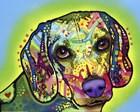 Beagle by Dean Russo art print