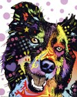 Border Collie 1 by Dean Russo art print