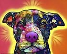 Love A Bull by Dean Russo art print