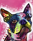 Boston Terrier by Dean Russo art print