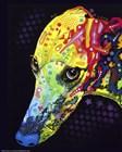Greyhound by Dean Russo art print