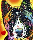 Akita 1 by Dean Russo art print