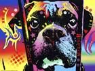 Choose Adoption Boxer by Dean Russo art print