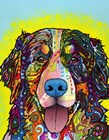 Bernese Mountain Dog by Dean Russo art print