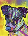 Jack Russell by Dean Russo art print