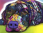 Savvy Labrador by Dean Russo art print