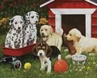 Puppy Playmates by William Vanderdasson art print