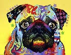 Pug by Dean Russo art print