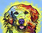 Golden Retriever by Dean Russo art print