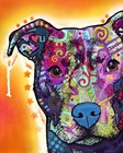 Heart U Pit Bull by Dean Russo art print