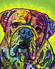 Hey Bulldog by Dean Russo art print