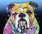 The Bulldog by Dean Russo art print