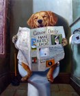 Dog Gone Funny by Julie Heffernan art print