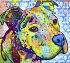 Thoughtful Pit Bull This Years Love 2013 Part 2 by Dean Russo art print