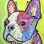 Pride by Dean Russo art print
