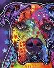 American Bulldog 3 by Dean Russo art print