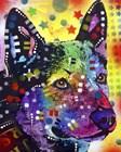 Aus Cattle Dog by Dean Russo art print