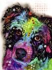 Aussie by Dean Russo art print