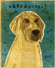 Yellow Labradoodle by John W. Golden art print