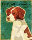 Brittany Spaniel by John W. Golden art print