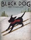 Black Dog Ski by Ryan Fowler art print