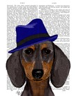 Dachshund With Blue Trilby by Fab Funky art print