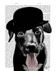 Black Labrador in Bowler Hat by Fab Funky art print