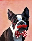 Boston Terrier Portrait with Red Bow Tie and Moustache by Fab Funky art print